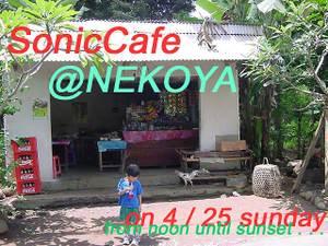 Nekoya01
